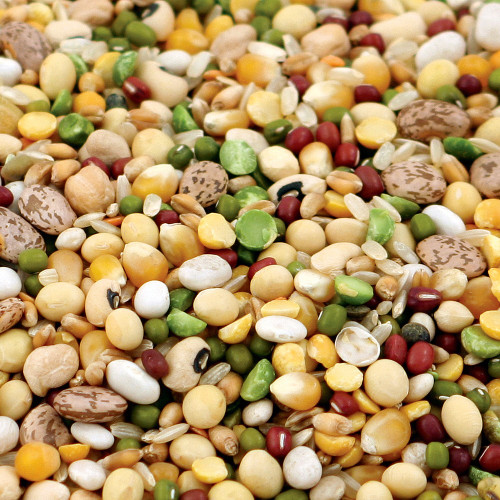 Tidymix Pulse & Rice Soaking Mix for Parrots 22.6kg