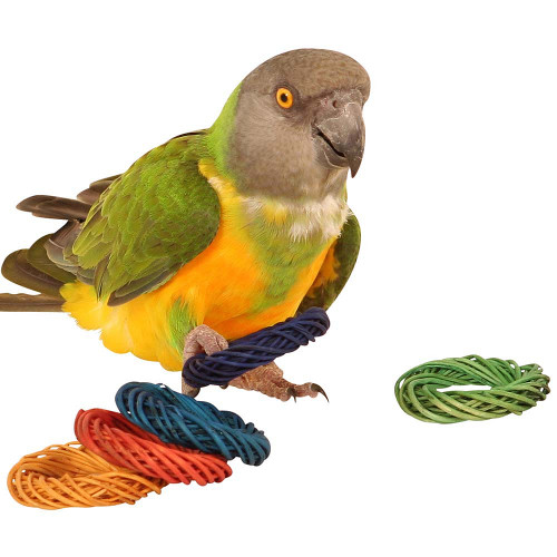 Coloured Willow Ring Woven Chew Toy for Parrots