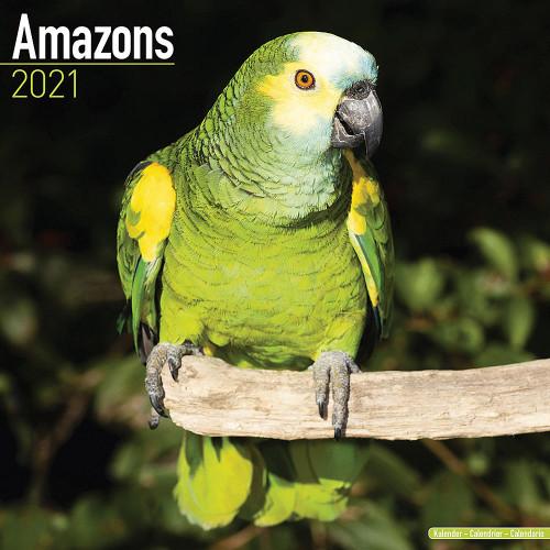 2021 Amazon Parrot Calendar