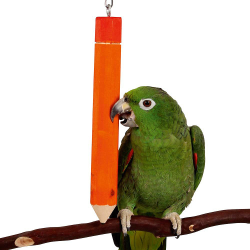 Hanging Pencil Parrot Toy - Giant
