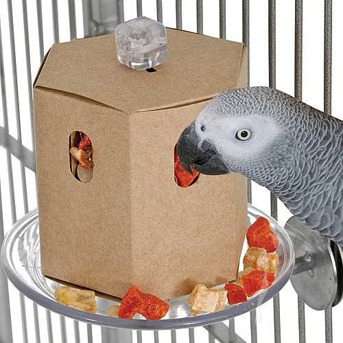 Buffet Box with Cage Mount Foraging Parrot Toy