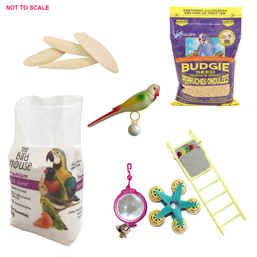 Budgie Value Starter Pack - All in One Essentials Kit