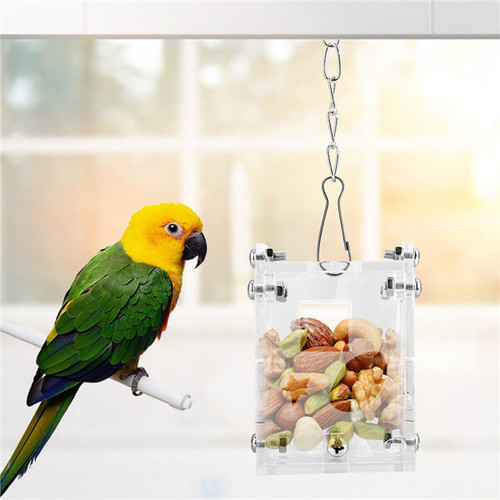 Acrylic Puzzle Foraging Parrot Feeder