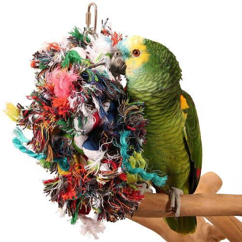 Multi Preener Parrot Toy