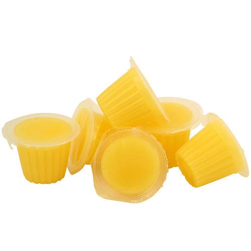 Fruit Cups Mango - Jelly Pots Parrot Treats - Pack of 6