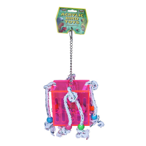 Acrylic Box & Rope Foraging Parrot Toy