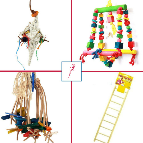 Activity & Foraging Parrot Toys - Pack of 4