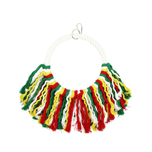 Rainbow Cotton Preening Parrot Swing