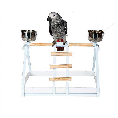 Table Top Parrot Stand White