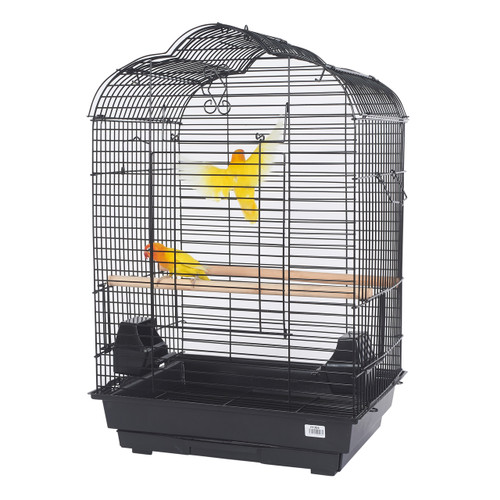 Pet Ting Daisy Small Open Top Parrot Cage Black