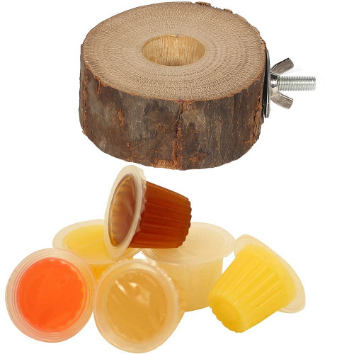 Pack of 6 Parrot Fruit Jelly Cups & Holder