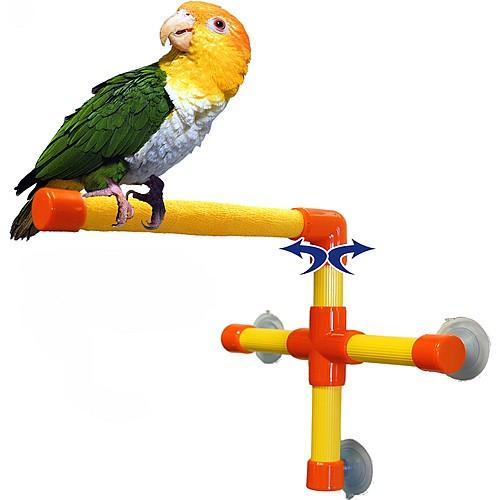 Shower & Window Parrot Perch - Small