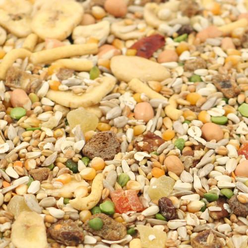 Tidymix Parrot Diet - High Quality Seed Blend