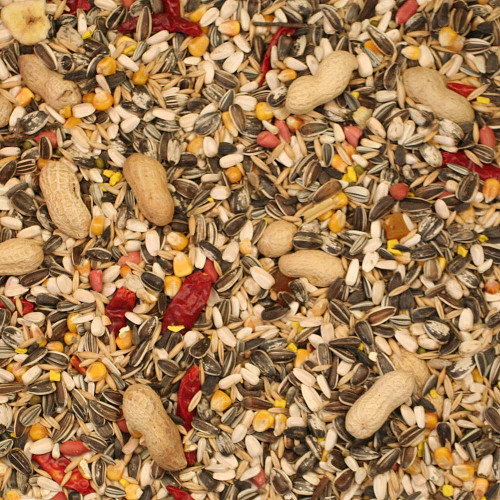Parrot Essentials Staple Parrot Food Seed Mix - 1Kg