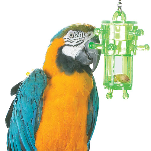 Snack Rack - Multi-Level Foraging Toy for Parrots
