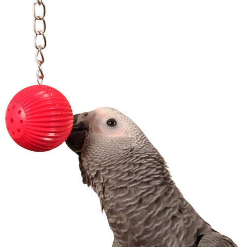 Birdy Babble Ball - Interactive Parrot Toy Assorted Brands
