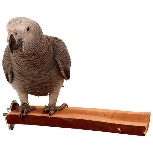 Manzanita Natural Flat Parrot Perch - Large