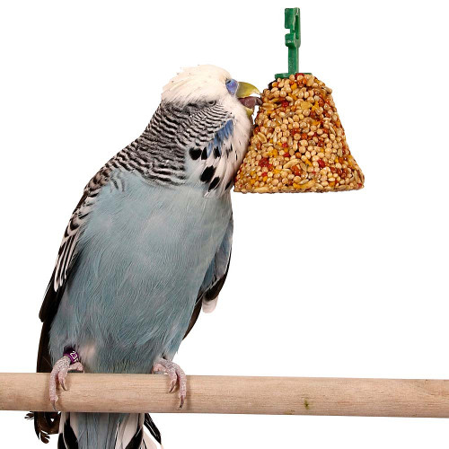 Johnsons Budgie & Parakeet Fruit & Honey Treat Seed Bell