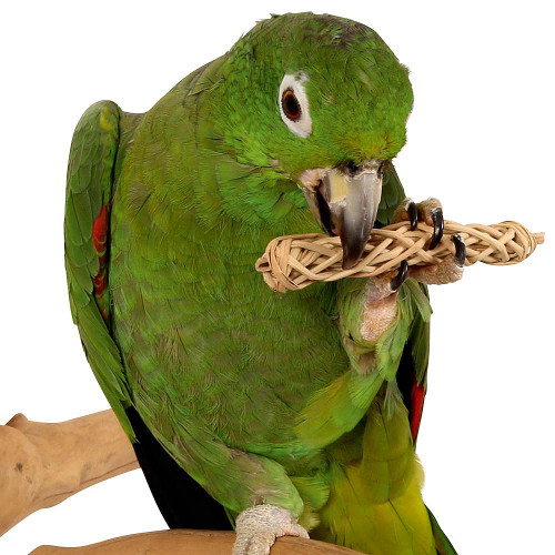 Foot Parrot Toy Natural Chews - Pack of 6