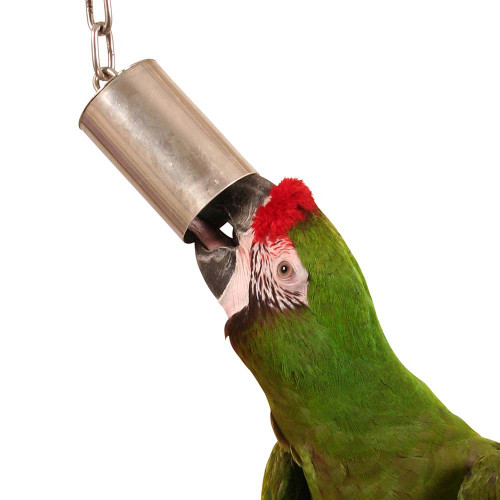 Stainless Steel Bell Parrot Toy - Large