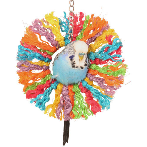 Rainbow Sisal Ring Rope Parrot Toy