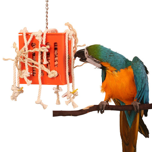 Crazy Leather Box Parrot Toy - Medium