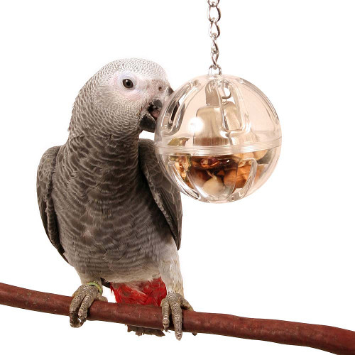Buffet Ball with Bell - Tough Foraging Parrot Toy