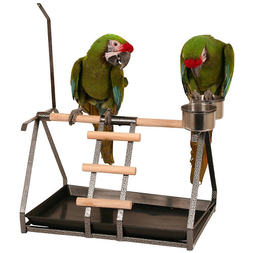 Tabletop Parrot Stand with Toy Hanger & Feeders