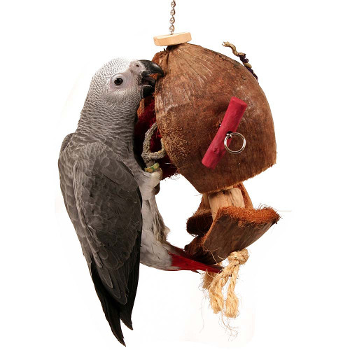 Coconut Slice - Large Natural Chew & Forage Parrot Toy