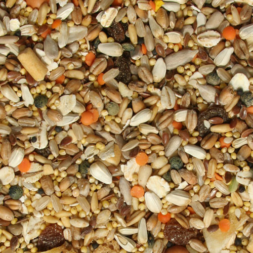 Tidymix High Quality Parakeet Seed Blend Food 1.15kg