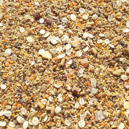 Tidymix Budgie Diet - High Quality Seed Blend 22,6kg
