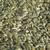 Pumpkin Seeds Parrot Treat - 100g