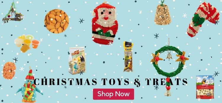 Christmas Parrot Toys & Treats