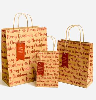 Merry Christmas Kraft Gift Bag