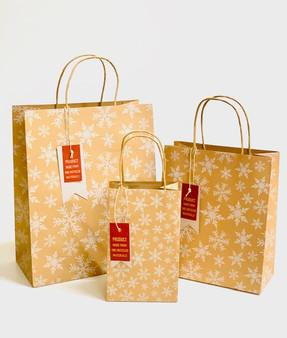 Snowflake Kraft Gift Bag