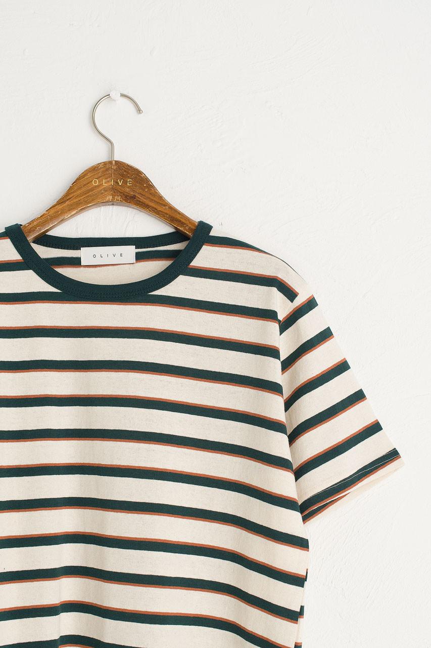Co Stripe Tee, Green/Ivory