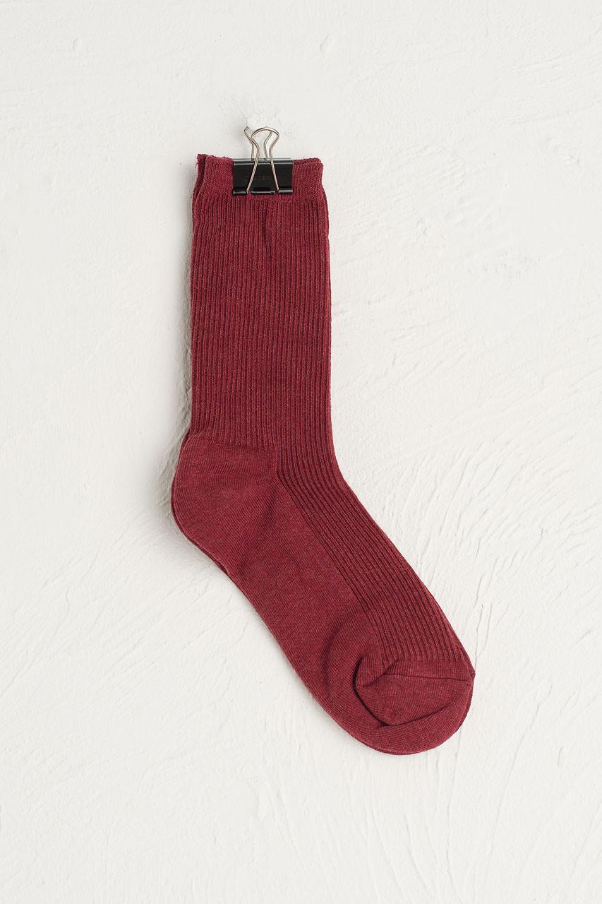 R Ribbed Socks, Wine