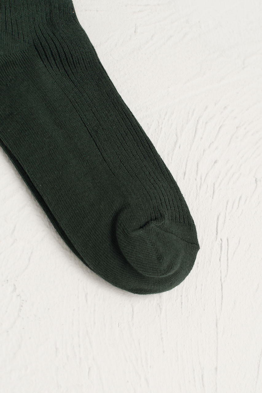 Colour Ribbed Socks, Green
