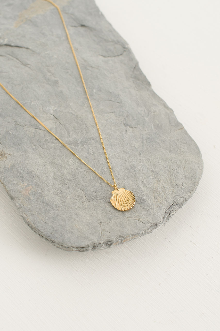Shell Neckalce, Gold Plated