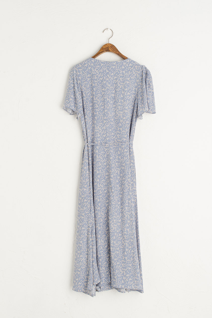 Christy Printed Dress, Blue