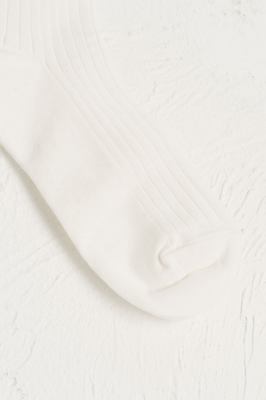 Lace Ankle Ribbed Socks, Ivory