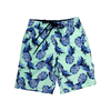 Youth Boys Mint Pineapple Stretch Swim Trunks