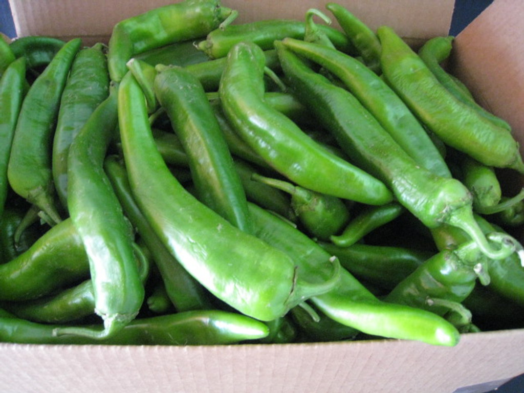 Freshly picked and packaged Sichler green chile.  Comes in a 25 lb. box fresh to your doorstep!  Smell up the neighborhood with New Mexico green chile.