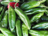 Joe Parker Mild Chile has an excellent flavor.  It is overall mild, but every so often it can have a bite! It is a large meaty thick chile.