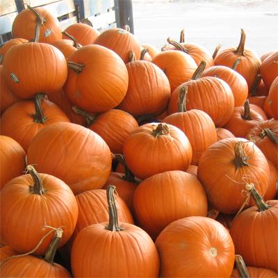 carving-pumpkins.jpg