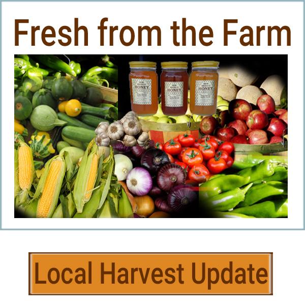 freshfromthefarm-rv1.jpg