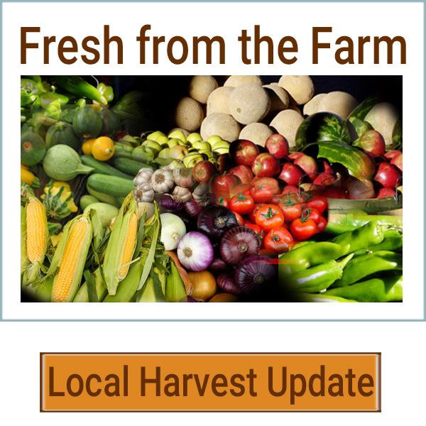 freshfromthefarm-rv2.jpg