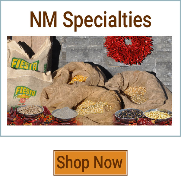 nmspecialities600px-rv3.jpg