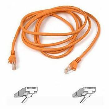 Belkin Cat5e Patch Cable A3L791-07-ORG