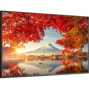 """NEC Display 55"""" Wide Color Gamut Ultra High Definition Professional Display MA551"""